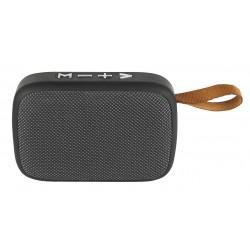 Loudspeaker Hora black / silver